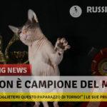 A Million Sviatoslav - Don Sphynx Campione Del Mondo