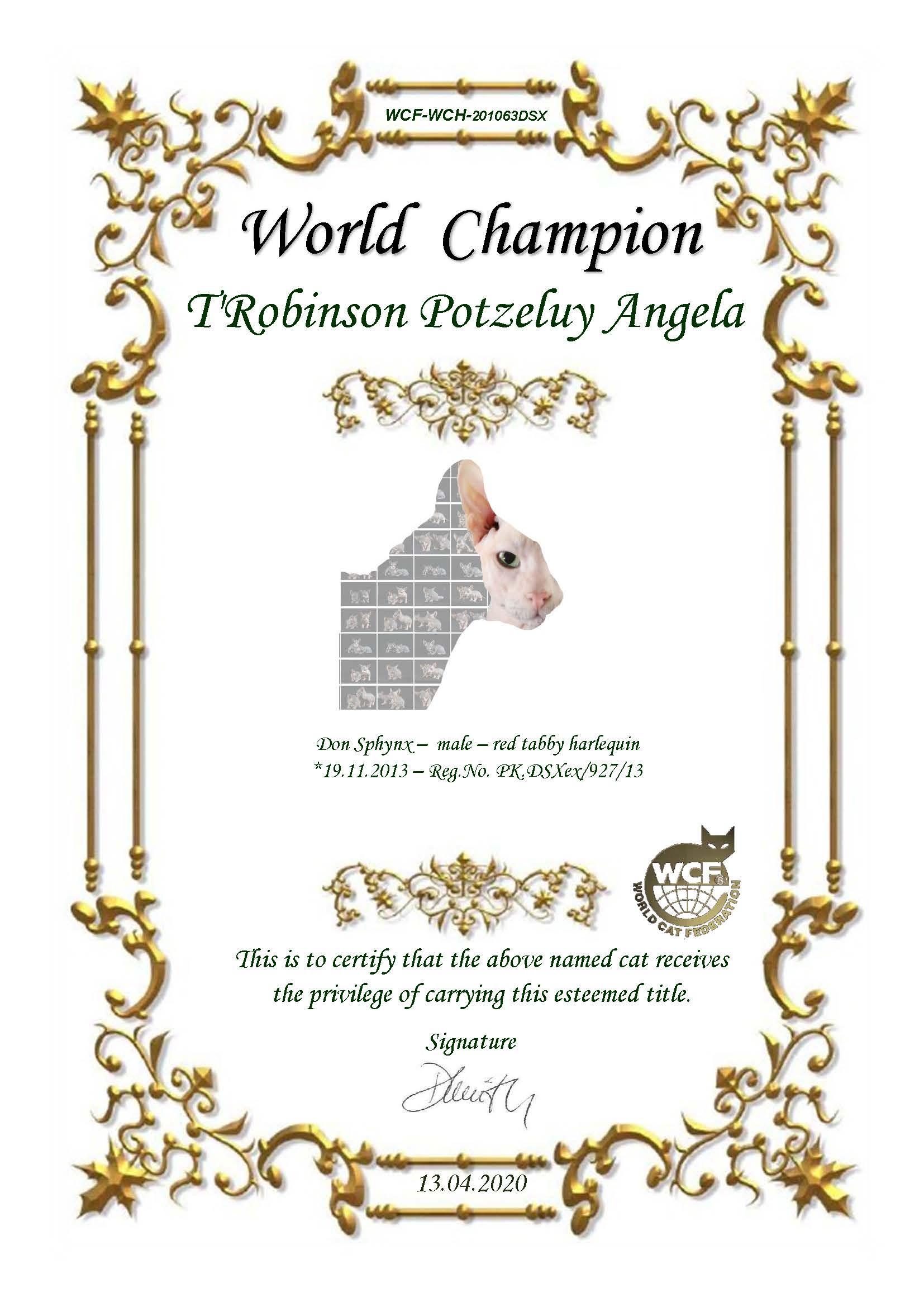 Titolo Robinson Campione del Mondo - Don Sphynx