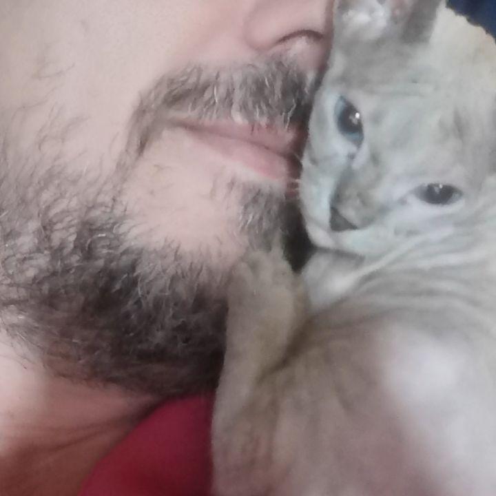 Kisses for the kitten  #r...